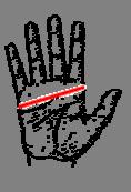 Mesure de la taille des gants chauffants Alpenheat